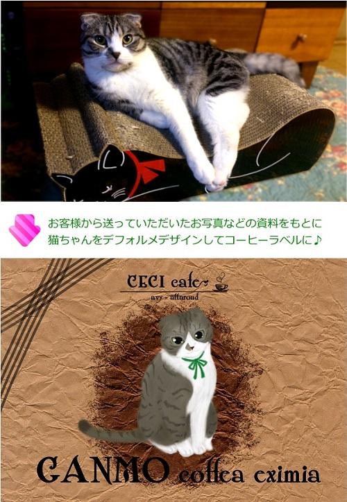 猫オーダーラベル事例