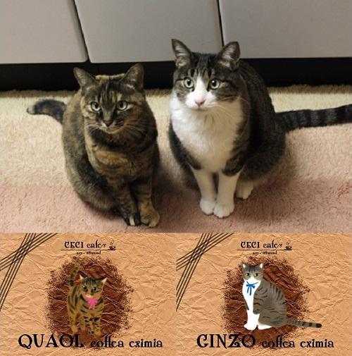 猫オーダーラベル事例2
