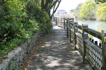 謎公園散歩道