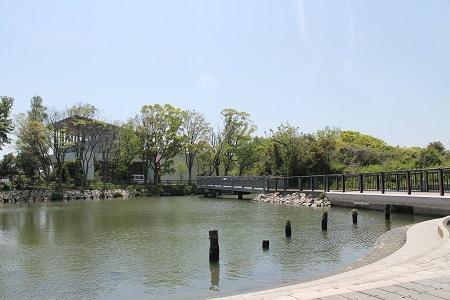 謎公園水辺