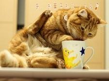 マグカップ猫手描きオーダーメイド名入れ5