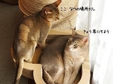 マグカップ猫手描きオーダーメイド名入れ1