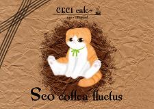 sco.png