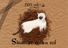 siamese.png